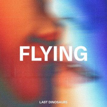 Testi Flying - Single