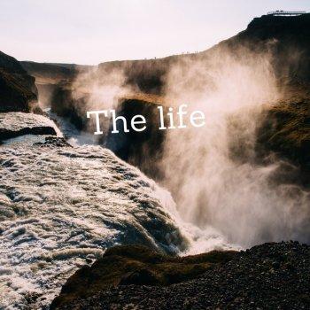 Testi The Life