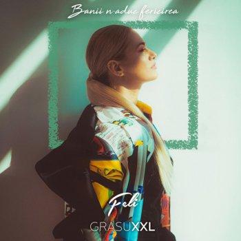 Testi Banii N-Aduc Fericirea (feat. Grasu XXL) - Single