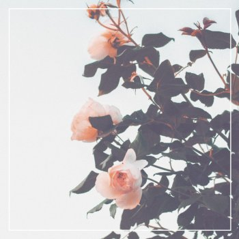 Testi Future Memories - Single