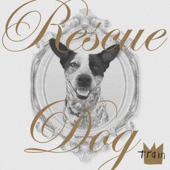 Testi Rescue Dog - Single