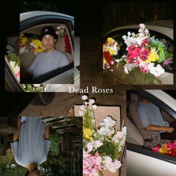 Testi Dead Roses - Single
