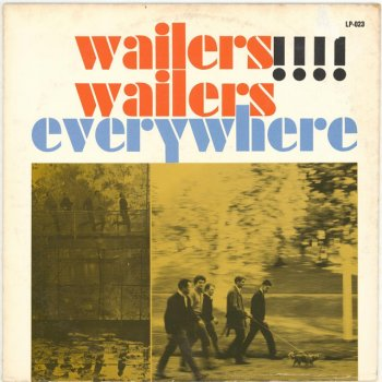 Testi Wailers Wailers Everywhere