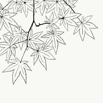 Testi Listening to the Leaves Fall - Single