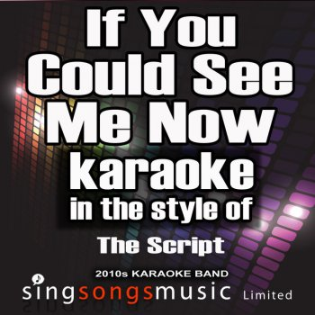 Testi If You Could See Me Now (In the Style of the Script) [Karaoke Version] - Single