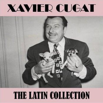Testi The Latin Collection