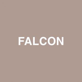 Testi Falcon