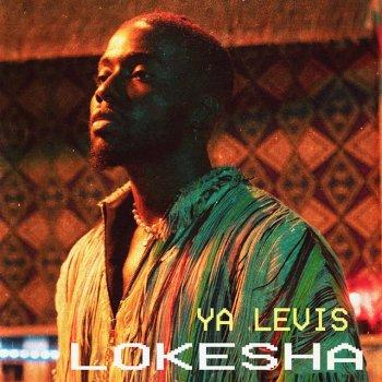 Testi Lokesha
