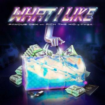Testi What I Like (feat. Rich The Kid & Tyga) - Single