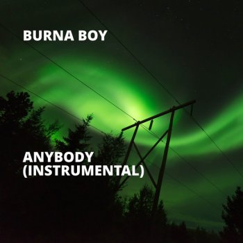Anybody (Instrumental) - cover art