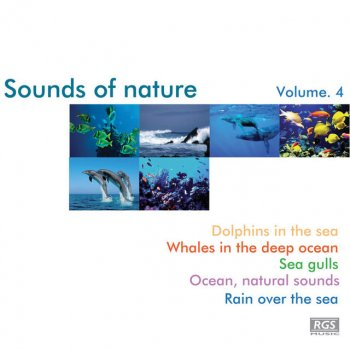 Testi Sounds Of Nature Volume 4