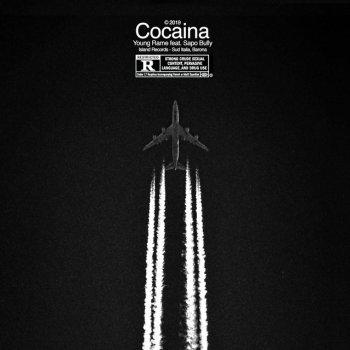 Testi Cocaina (feat. Sapobully) - Single
