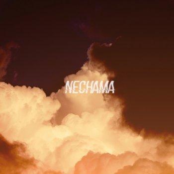 Testi Nechama