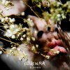 Nature morte lyrics – album cover