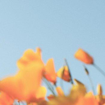 Testi Build Me Up Buttercup - Single