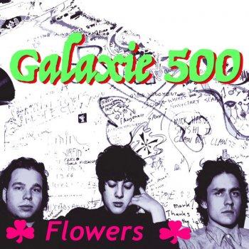 Testi Flowers