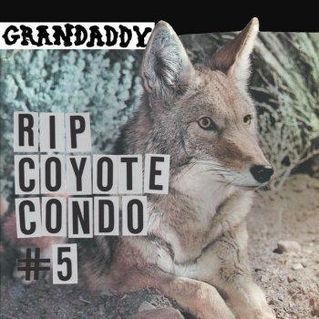 Testi RIP Coyote Condo #5 - Single
