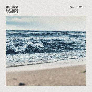 Testi Ocean Walk