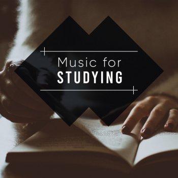 Testi Music for Studying