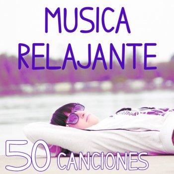 Musica de meditacion y relajacion reiki