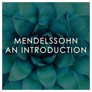 Testi Mendelssohn: An Introduction