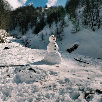 Testi Snowman