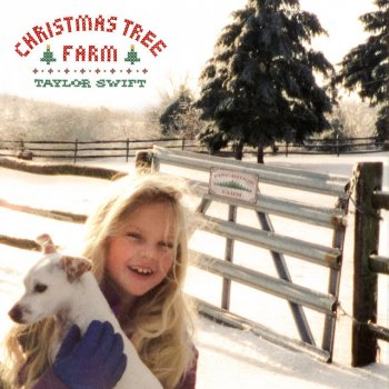 Testi Christmas Tree Farm - Single