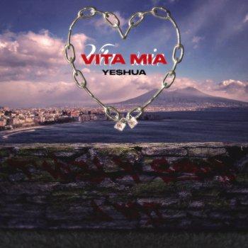 Testi Vita Mia - Single