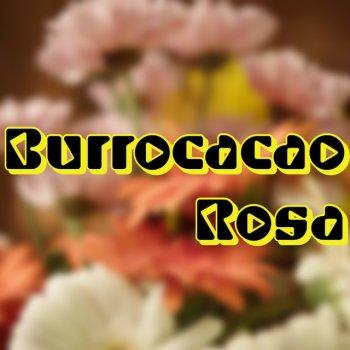 Testi Burrocacao Rosa - Single