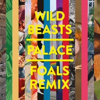 Testi Palace (Foals Remix)