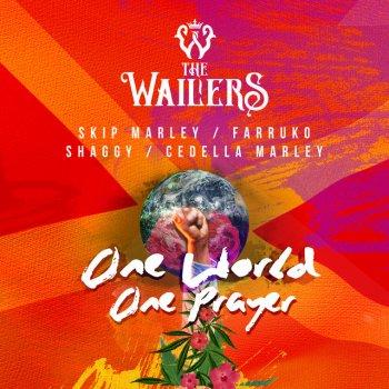Testi One World, One Prayer (feat. Skip Marley, Farruko, Shaggy & Cedella Marley) - Single