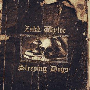 Testi Sleeping Dogs
