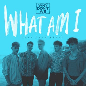 Testi What Am I (Cash Cash Remix) - Single