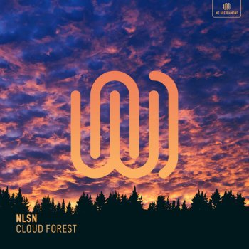Testi Cloud Forest - Single