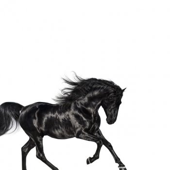 Old Town Road                                                     by Lil Nas X – cover art