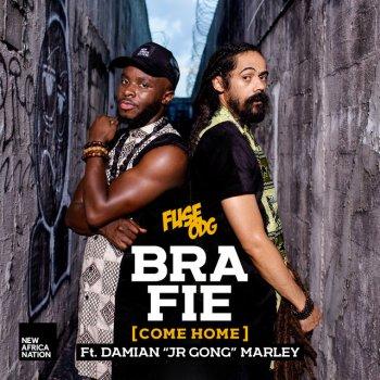 """Testi Bra Fie (feat. Damian """"JR GONG"""" Marley)"""