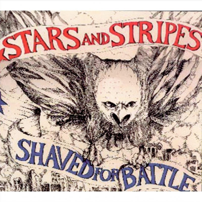 stars-and-stripes-shaved-for-battle