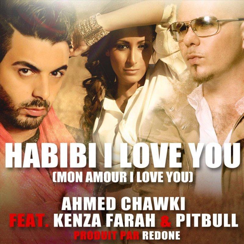 Chawki feat  Pitbull & Mandinga - Habibi I Love You (Radio