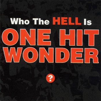 Testi Who the Hell Is One Hit Wonder?