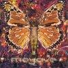 Electronic Funk lyrics – album cover