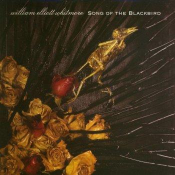 Testi Song of the Blackbird