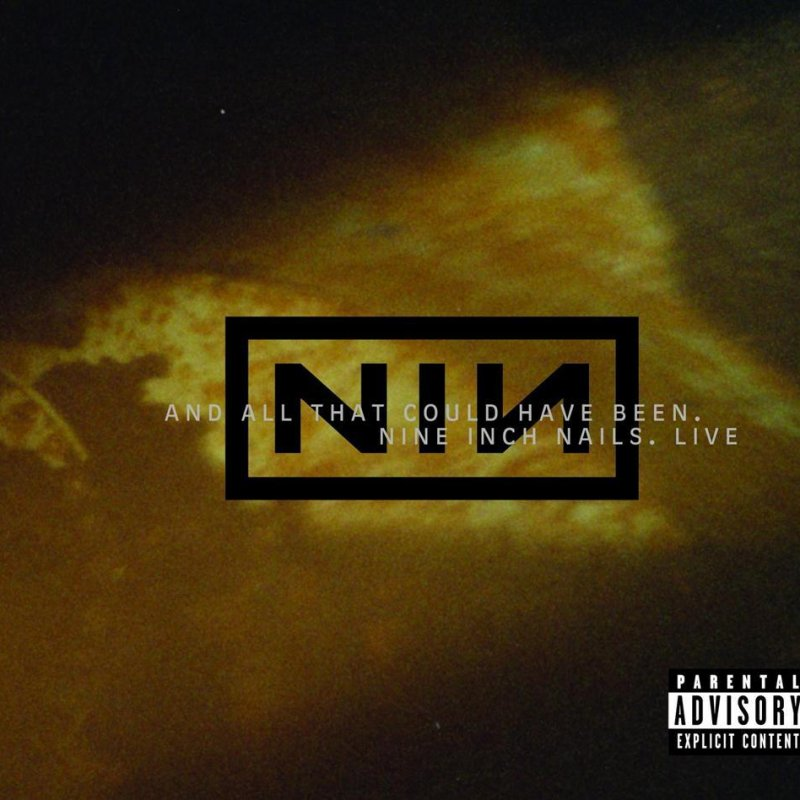 Nine Inch Nails - And All That Could Have Been Lyrics | Musixmatch