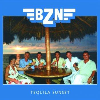 Summer by BZN - cover art