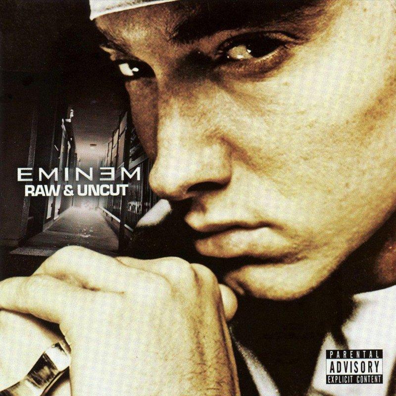 Eminem - Nail In the Coffin Lyrics   Musixmatch